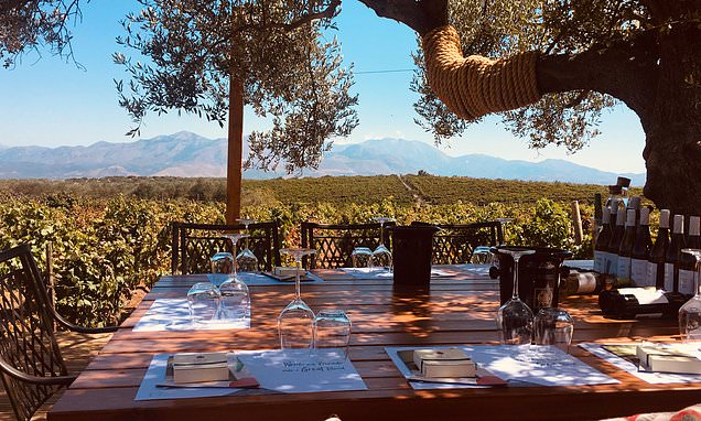 , Sipping fine wines in GREECE approved by the Queen's wine and spirit merchant Berry Bros. & Rudd | Daily Mail Online